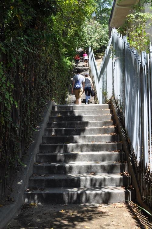 Secret Stair Walk 29